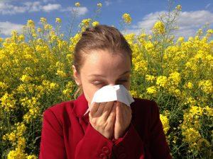 Green tea helps reduce allergies