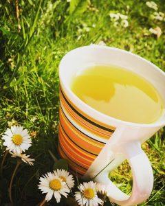 Green tea is great for bone strength