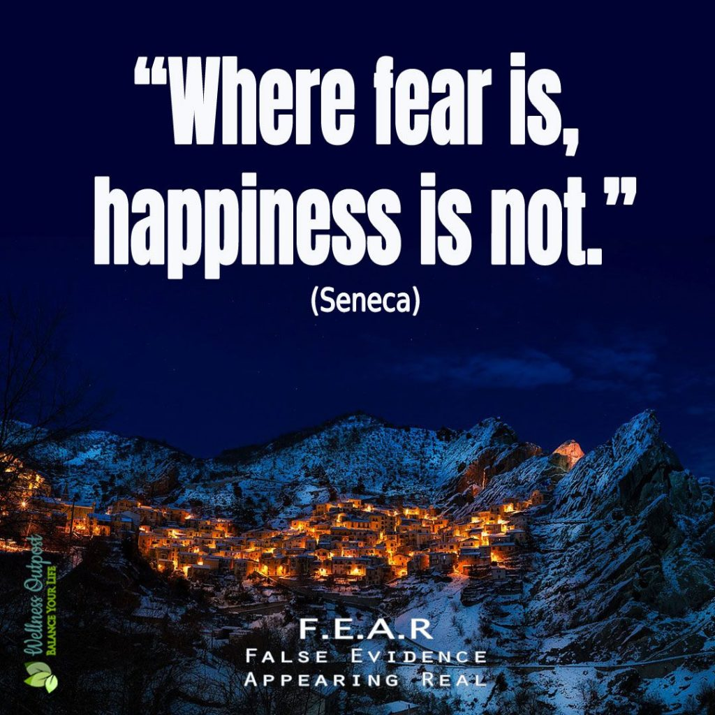 Where-fear-is-happiness-is-not-Seneca Quote Instagram